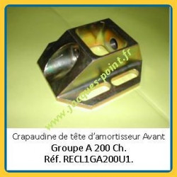 RENAULT Clio 1 Gr.A 200Ch - Crapaudine